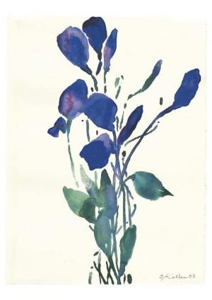 Blauer Strauß