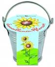Sonnenblumen-Pflanzset - Erstkommunion 2016
