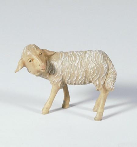 Krippenfigur Schaf, umschauend