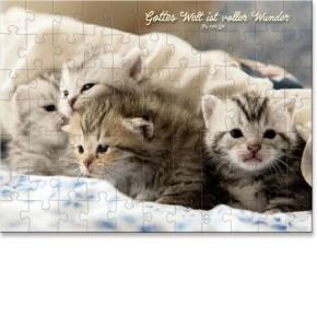 Puzzle-Cup - Katzen